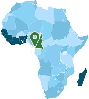 Cameroon Africa Map